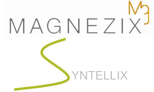 Magnezix Logo